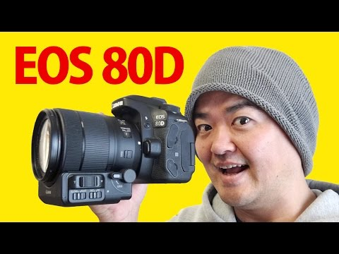 Canon EOS 80D 徹底レビュー!最新デジタル一眼レフの動画性能を中心に深掘り検証!提供:キヤノン株式会社