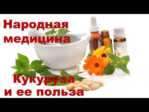 Кукурузные рыльца - применение, противопоказания, отзывы