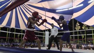 Crizsander Laurente wins Palarong Pambansa 2014 gold medal