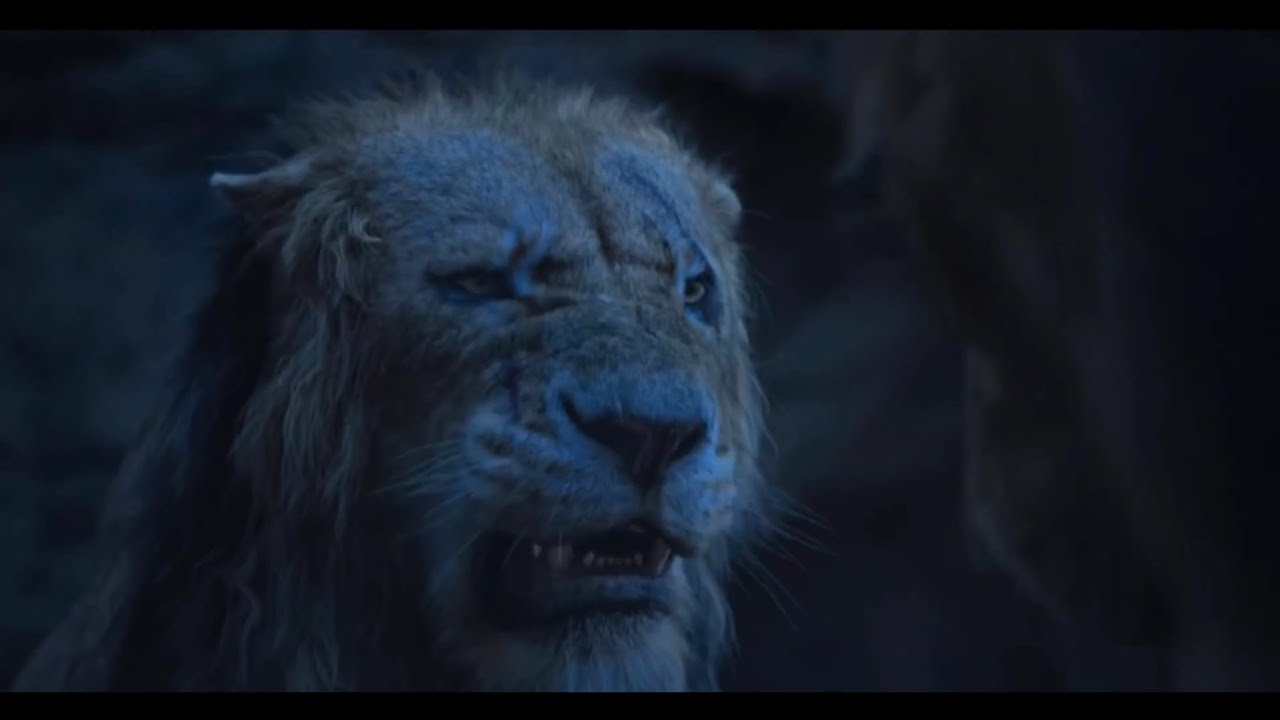 Download How Scar Tells Simba That He Killed Mufasa   Lion King Clip   Trailers For You
