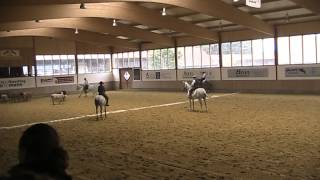Working Equitation  Rinderarbeit Stephan mit Pescador
