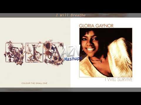 I Will Breathe - Sia vs. Gloria Gaynor (Mashup)