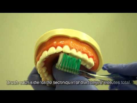 How to brush and floss your teeth