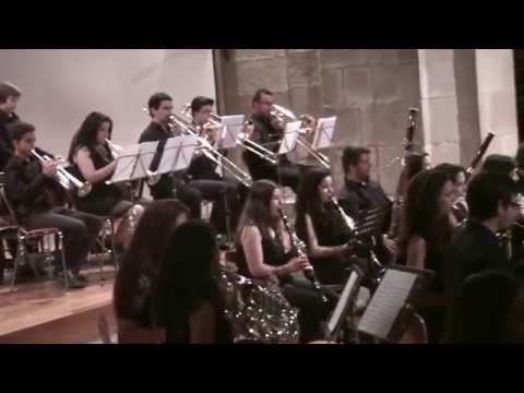 2015 - Xulio - Danzas Hungaras - Orquesta CAMARA (USC - Universidad de Santiago de Compostela).