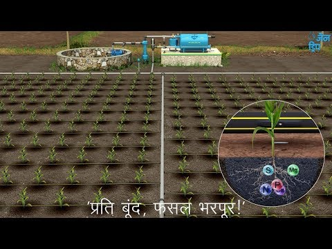 Jain Drip Irrigation System Layout - Hindi