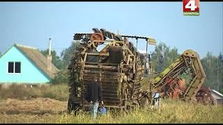 Белорусские фермеры