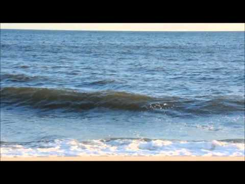 Reading the Beach - Understanding Waves & Wave Action