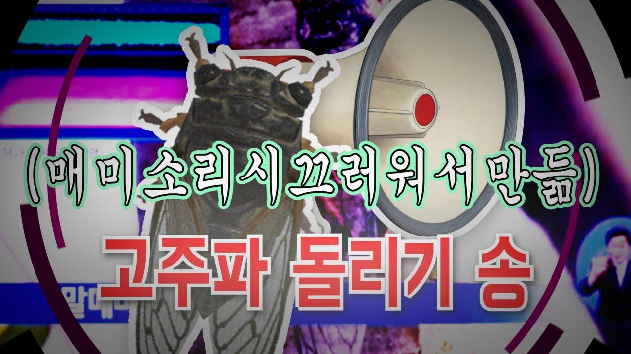매미 - 고주파 돌리기 송 (파돌리기송)