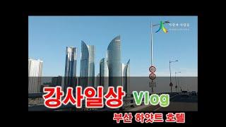 강사일상브이로그 사상체질강의 부산하얏트호텔 김선생