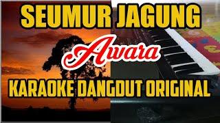 Download lagu Seumur jagung - awara - karaoke dangdut
