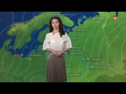 Погода сегодня, завтра, видео прогноз погоды на 3 дня 3.12.2016