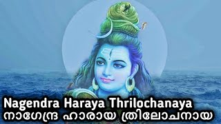 "Mind blowing ""Nagendra haraya Trilochanaya"",  ShivPanchakshari Sthothram."