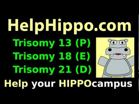 Trisomy 21 18 13 mnemonic tutorial: Down