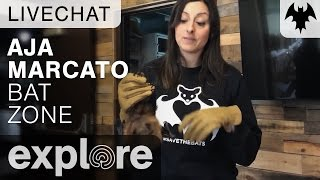 Aja Marcato - Organization For Bat Conservation - Live Chat thumbnail