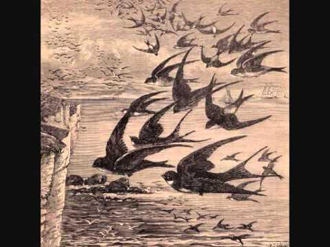 Neutral Milk Hotel - Little Birds STUDIO VERSION