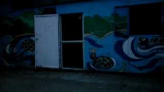 Черноморка,Черноморская коса,база отдыха Нептун,2013(, 2013-08-07T16:59:16.000Z)
