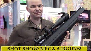 Shot Show 2015: Armada Magpul Edition/bulldog .357 Airguns  - Preparedmind101