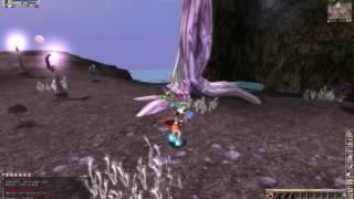 Neo Steam Online Elf Warrior Gameplay - HD Video
