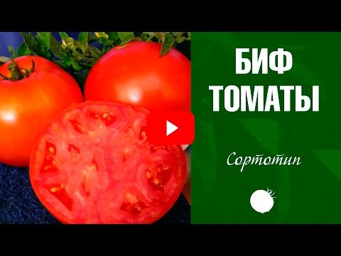 Биф томаты 🍅 Обзор от эксперта