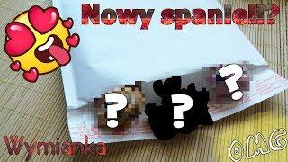 LPS 15 Wymianka LPS NOWY SPANIEL Joy LPS