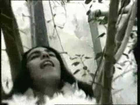 -algir-shelly-official-video-lyrics-eden-peer