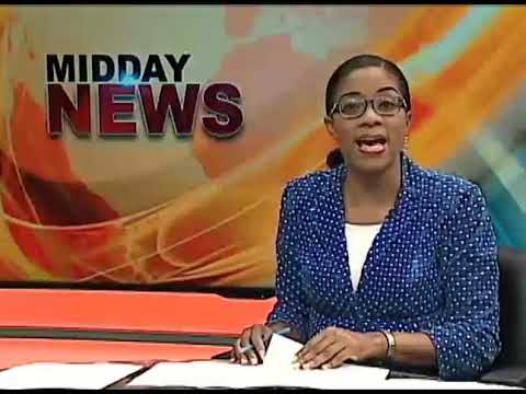 More Fireworks at PAC Meeting Re PETROJAM (Midday News) February 5 2019