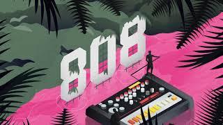 tv noise   808