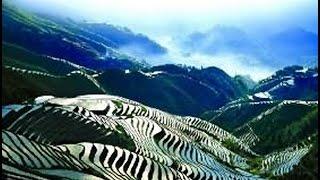 Рисовые террасы в провинции Юньнань : Китай