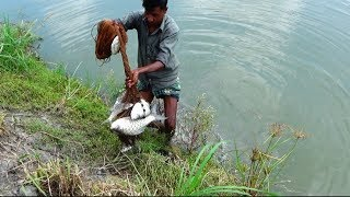 Best Net Fishing for River।Big Catla Fish hunting By Cast Net।Net Fishing in the River (part-67)