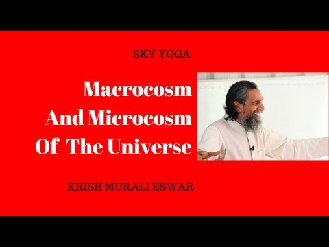 Macrocosm and Microcosm of the Universe
