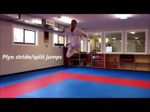 Karate Kumite-Specific Speed Agility and Quickness Training Program