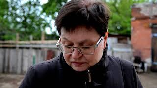"""Экскурсия по приюту собак """"Преданное сердце"""" в Нижнем Новгороде"""