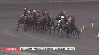 Vidéo de la course PMU PRIX DU LANGUEDOC