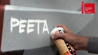 ART BIENNALE 2013 - BACK 2 BACK - Peeta