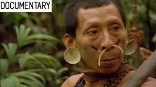 Documentary channel wild animal 3 - Nature - National geo