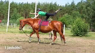 I Turnus Sportowy - Stajnia Sarage