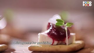 Cook Smart | Beetroot Coulis Recipe | Master Chef Sanjeev Kapoor