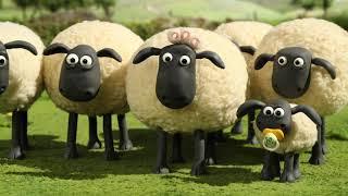 Shaun the Sheep season 2 episode 2.