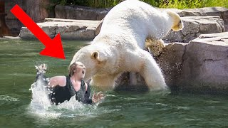 11 Zoo Animal Attacks