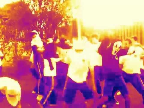 Harlem Shake School Curitiba Brazil
