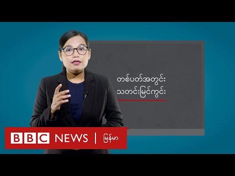 သမ္မတနဲ့အတိုင်ပင်ခံ ပါတီစည်းရုံးရေးလုပ်သင့်လား- BBC