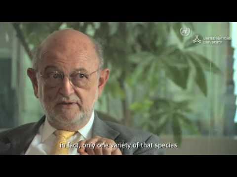 Interview with Professor Jose Sarukhan Kermez 18/5/09