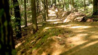 Awesome Mountain Biking Trails | Summit Bechtel Reserve | Boy Scouts | West Virginia