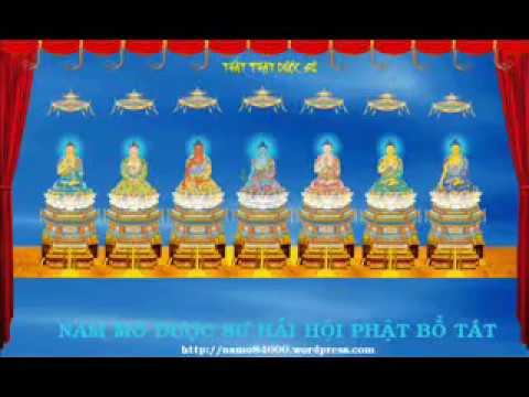 Suoi Nguon Tinh Thuong - Tụng Kinh Dược Sư - Thầy Thích Từ Thọ