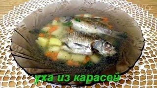 Уха из карасей. Fish-soup of carp.