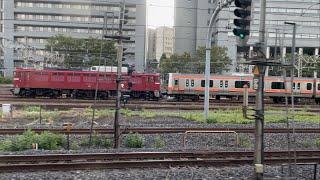EF81-141+E231系MU43編成 大宮操車場停車中