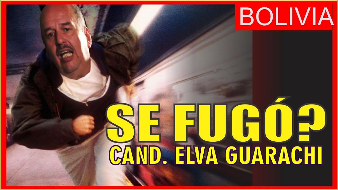 QUE PASÓ CON MURILLO?  Cand. a Sen. Elva Guarachi en dialogo con bolivianos en el extranjero