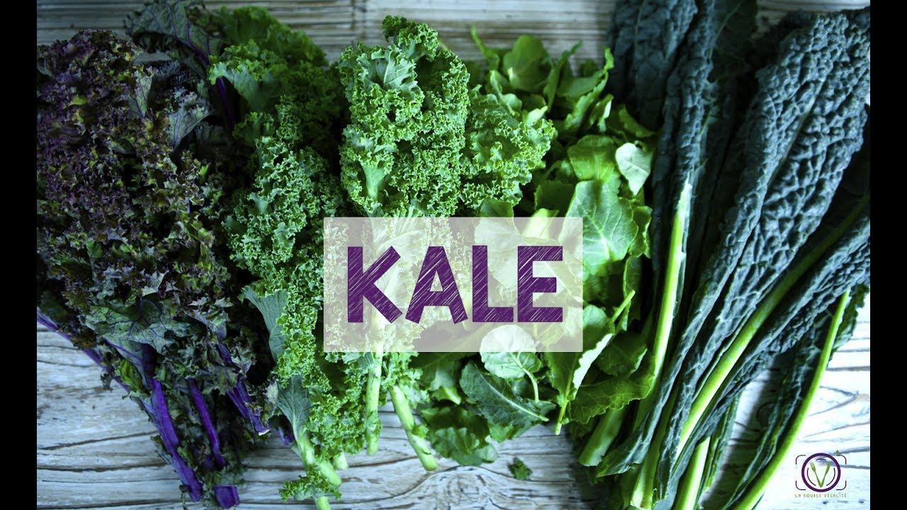 Les bienfaits du kale youtube - Les bienfaits du stepper ...
