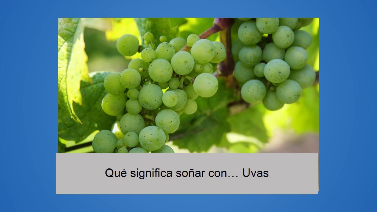 Sonarse comiendo uvas verdes