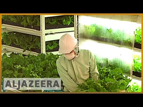 ???????? Earthrise - Japan's Future Farms